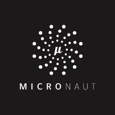 Micronaut - primeiras impressões 1